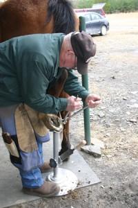 About horseshoeing